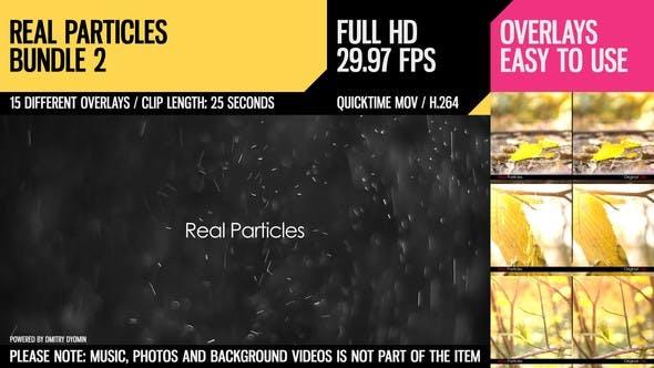 Real Particles Bundle 2 (Heavy Particles)