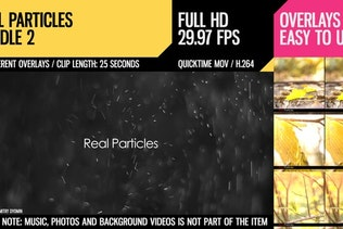 Real Particles Bundle 2 (Heavy Particles)
